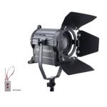 PROLITE JSP-1000 LED FRESNEL